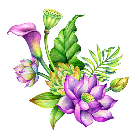 watercolor botanical illustration, tropical floral arrangement, greeting card, exotic flowers, bridal bouquet, oriental garden nature, lotus, calla lily, green leaves, lotos, clip art isolated on white background Archivio Fotografico