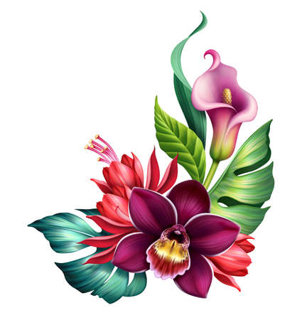 floral illustration of colorful bouquet with tropical flowers and green leaves. Botanical corner design element isolated on white background
