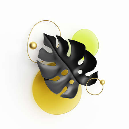 3d render, abstract composition with black paper monstera leaf, golden wire and colorful glass shapes isolated on white background