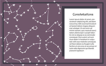 Patterns of 12 zodiac signs. Vector illustration of the horoscope of the constellation. Template for postcard, brochure, page, booklet.