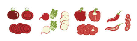 Set of cut vegetables, cute drawings, red pieces of tomato, radish, pepper
