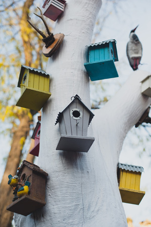 house with style: birdhouse in a white tree