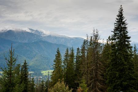 View on Zakopane Tatras Mountains from Gubalowka, Poland 2018 Stock Photo - 115530055