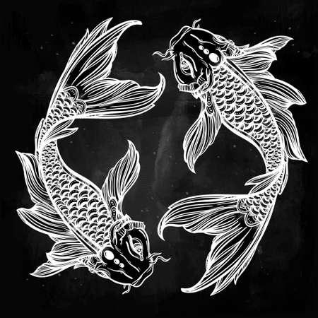 pez carpa: Dibujado a mano la línea de arte hermosa romántica de peces Koi carpa - símbolo o armonía y sabiduría. Ilustración vectorial aislado. El arte espiritual. Ideal para el arte del tatuaje, libros para colorear.