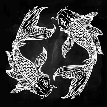 carp: Hand drawn romantic beautiful line art of fish Koi carp - symbol or harmony and wisdom. Vector illustration isolated. Spiritual art. Ideal for tattoo art, coloring books.