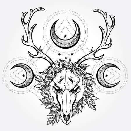 Beautiful scull tattoo art. Vintage deer scull pagan style. Antlers with branches and ornate moons with  stars. Hand drawn outline work.