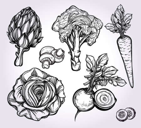 artichoke: Garden vegetables set vintage linear style. Isolated illustration. Hand drawn retro symbols of assorted veges. Perfect menu, garden farm, shop, market, organic, vegetarian vegan foods template.