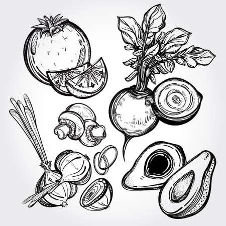 champignon: Garden vegetables set vintage linear style. Isolated illustration. Hand drawn retro symbols of assorted veges. Perfect menu, garden farm, shop, market, organic, vegetarian vegan foods template.