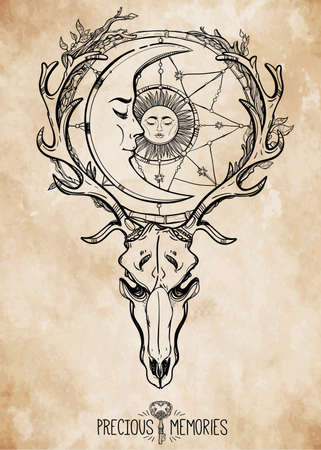 old moon: Beautiful scull tattoo art. Vintage deer scull with antlers and branches and ornate dream catcher with stars, sleeping moon and sun in it. Hand drawn outline work. Vector illustration. Isolated.