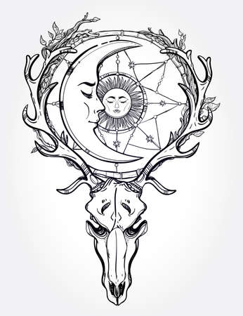 alchemy: Beautiful scull tattoo art. Vintage deer scull with antlers and branches and ornate dream catcher with stars, sleeping moon and sun in it. Hand drawn outline work. Vector illustration. Isolated.