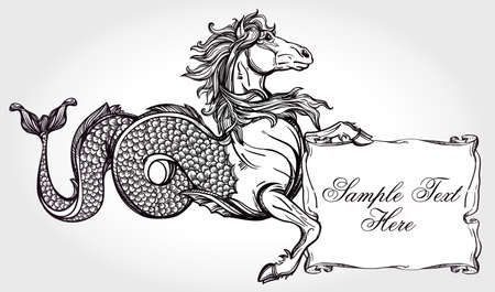 kelpie: Hand drawn vintage Hippocampus - mythological sea horse with scroll for your text. Copy space for message. Tattoo element. Heraldry, logo concept art. Isolated vector illustration in line art style.