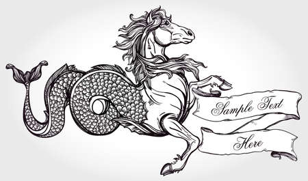 vignettes: Hand drawn vintage Hippocampus - mythological sea horse with scroll for your text. Copy space for message. Tattoo element. Heraldry, logo concept art. Isolated vector illustration in line art style.