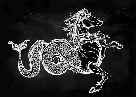 kelpie: Hand drawn vintage Hippocampus or Kelpie - magic sea or water horse. Folklore motif, tattoo art. Heraldry and logo concept art. Isolated vector illustration in line art style. Mythological creature. Illustration