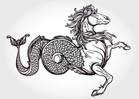 bata blanca: Dibujado a mano Hippocampus vintage o Kelpie - mar m�gica o caballo de agua. Motivo de Folklore, el arte del tatuaje. Her�ldica y el logotipo de arte conceptual. Ilustraci�n vectorial aislados en la l�nea estilo del arte. Criatura mitol�gica. Vectores