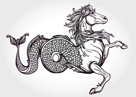 tattoo arm: Hand drawn vintage Hippocampus or Kelpie - magic sea or water horse. Folklore motif, tattoo art. Heraldry and logo concept art. Isolated vector illustration in line art style. Mythological creature. Illustration