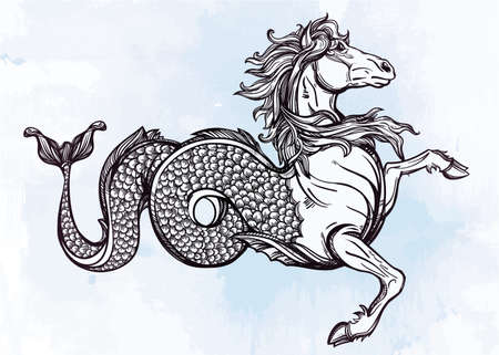 sea water: Hand drawn vintage Hippocampus or Kelpie - magic sea or water horse. Folklore motif, tattoo art. Heraldry and logo concept art. Isolated vector illustration in line art style. Mythological creature. Illustration