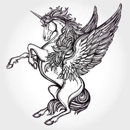 tattoo art: Hand drawn vintage Unicorn mythological winged horse. Victorian motif, tattoo design element. Heraldry and logo concept art. Isolated vector illustration in line art style. Illustration