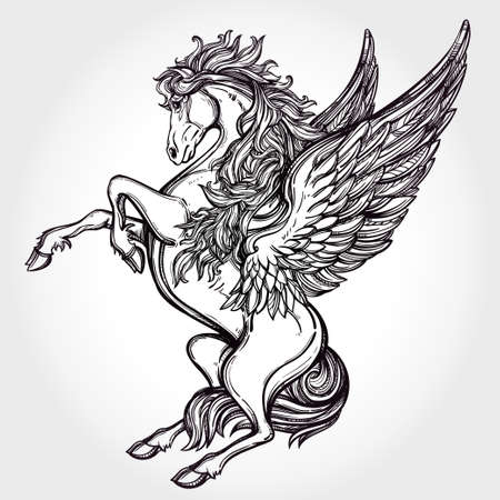 tattoo drawings: Hand drawn vintage Pegasus mythological winged horse. Victorian motif, tattoo design element. Heraldry and logo concept art. Isolated vector illustration in line art style. Illustration