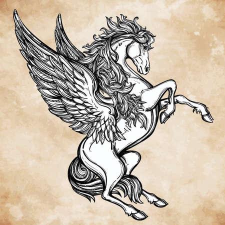siluetas de animales: Dibujado a mano de la vendimia de Pegaso alado mitol�gico caballo. Motivo victoriana, tatuaje elemento de dise�o. Her�ldica y el logotipo de arte conceptual. Ilustraci�n vectorial aislados en la l�nea estilo del arte.