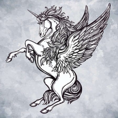 unicorn: Hand drawn vintage Unicorn mythological winged horse. Victorian motif, tattoo design element. Heraldry and  concept art. Isolated vector illustration in line art style.