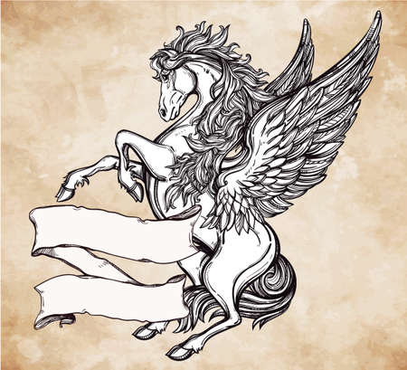 mustang horse: Hand drawn vintage Pegasus mythological winged horse with scroll for your text. Copy space for message. Tattoo element. Heraldry and logo concept art. Isolated vector illustration in line art style.