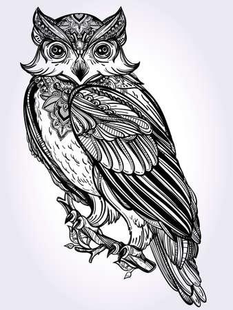 animales silvestres: Altamente detallada mano dibuja estilo vintage diseño de búho. Ilustración vectorial aislado. Vectores
