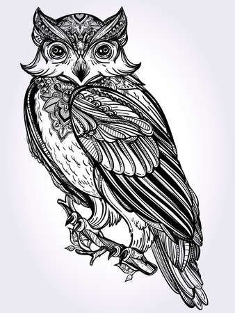 engraving print: Highly detailed hand drawn Owl design vintage style. Vector illustration isolated.