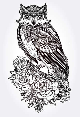 owl tattoo: Highly detailed hand drawn Owl with roses vintage style. Vector illustration isolated. Magic nature objects. Tattoo line.