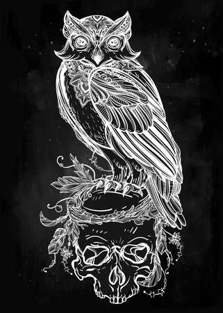 scull: Highly detailed hand drawn Owl with ornate scull design vintage style. Vector illustration isolated. Magic nature objects. Tattoo outline. Retro invitation,card, scrap booking. t-shirt, bag, poster.