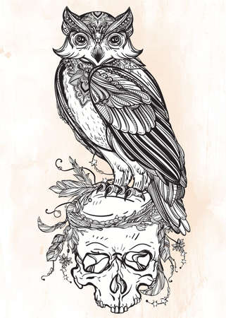 owl tattoo: Highly detailed hand drawn Owl with ornate scull design vintage style. Vector illustration isolated. Magic nature objects. Tattoo outline. Retro invitation,card, scrap booking. t-shirt, bag, poster.