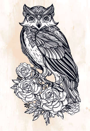 tattoo: Highly detailed hand drawn Owl with roses vintage style. Vector illustration isolated. Magic nature objects. Tattoo line.