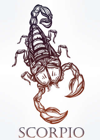 cartoon scorpion: Hand-drawn tattoo art. Vintage symbol, highly detailed hand drawn Scorpion, sign of horoscope Scorpio in linear style. Isolated vector illustration.