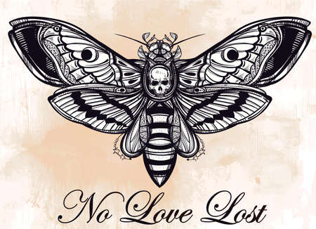 mariposa: La cabeza de muertes halcón mano polilla silueta dibujada. Diseño arte del tatuaje. Elegante ilustración vectorial aislado. Elemento de la vendimia de moda. Oscuro romance, la filosofía, la espiritualidad, el ocultismo, la alquimia, la muerte, la magia.