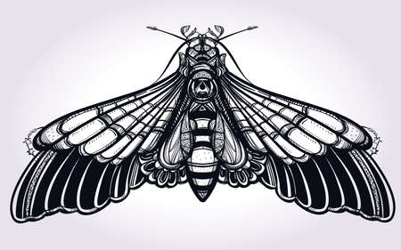 occultism: Butterfly moth hand drawn linear style. Elegant design tattoo art. Isolated vector illustration. Trendy Vintage style element. Dark romance, love, occultism, alchemy, magic, mysticism.