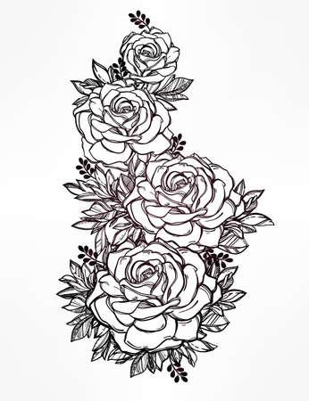 tatouage fleur: Vintage main très détaillée floral dessiné rose tige de la fleur de roses et de feuilles. Motif victorienne, tatouage élément de design. Concept art Bouquet. Isolated illustration de vecteur dans le style de l'art en ligne. Illustration