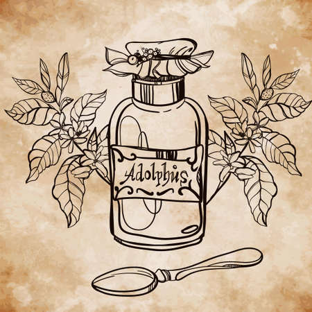 hojas antiguas: Elemento para la farmacia y la medicina herbal. A base de plantas y hierbas concepto m�dico m�dicos expedidos y spices.Vintage doodle del estilo en el fondo de papel envejecido tarjeta. Ilustraci�n del vector.