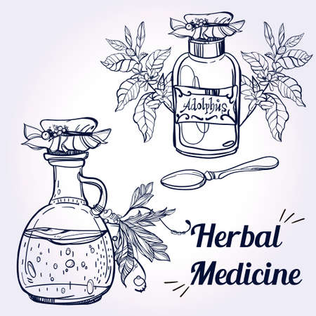 therapy: Elements for pharmacy and herbal medicine. Herbal Medical Concept and drawn medical herbs and spices. Vector Illustration.