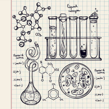 laboratory equipment: Hand drawn science beautiful vintage lab icons sketch set . Vector illustration. Back to School. Doodle lab equipment.Biology, geology alchemy, chemistry, magic, tattoo elements.