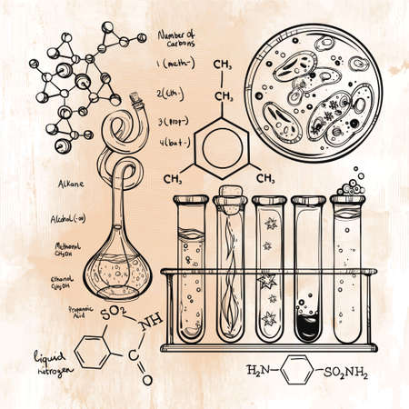 alchemical: Hand drawn science beautiful vintage lab icons sketch set . Vector illustration. Back to School. Doodle lab equipment.Biology, geology alchemy, chemistry, magic, tattoo elements.