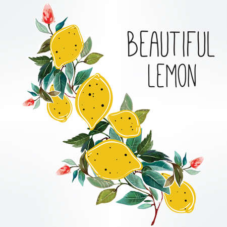 lemons: Hand drawn lemons on a branch background . Watercolor and cut-out illustration. Vector art for greeting cards, invitations.