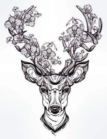 orchidee: Disegnata a mano romantico bel disegno di una testa di cervo adorened con i fiori. Illustrazione di vettore isolata. design etnico, tatuaggio elemento e simbolo tribale per l'uso.