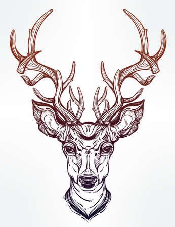 pagan: Hand drawn romantic beautiful drawing of a deer head. Vector illustration isolated. Ethnic design, tattoo element and tribal symbol for your use.