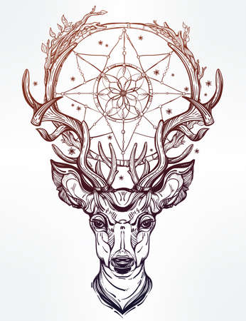 pagan: Hand drawn romantic beautiful drawing of a deer head with dream catcher. Vector illustration isolated. Ethnic design, tattoo element and tribal symbol for your use.