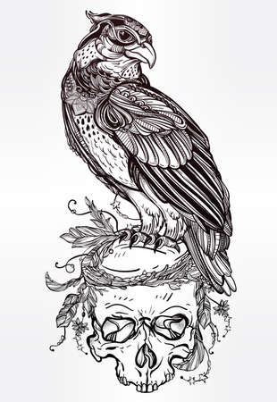 white bird: Detailed hand drawn bird of prey on a skull. Vector illustration isolated. Tribal nature objects. Tattoo outline, invitation,card, t-shirt, bag, postcard, poster.