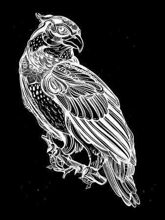 bird of prey: Detailed hand drawn bird of prey.