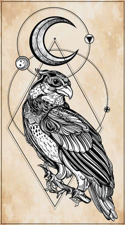 bird of prey: Detailed hand drawn bird of prey with sacred geometry moon. Vector illustration isolated. Tribal nature objects. Tattoo outline.