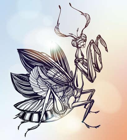 escarabajo: Dibujado a mano hermoso Mantis escarabajo. arte del tatuaje del vector del estilo de la vendimia. ilustración del vector. Diseño de impresión. decoración lineal.