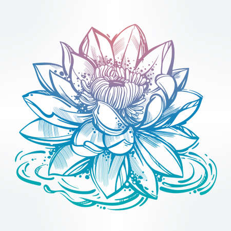 botany: Vector set of hand drawn lotus flower. Lily motif, tattoo design element. Bouquet concept art. Isolated vector illustration in line art style.