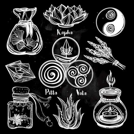 health beauty: Hand drawn natural Auyrveda healthcare and treatment concept set. Isolated illustration in vector. Organic plants, alternative medicine background. Natural holistic ingredients. Template. Illustration