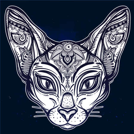 spirituality: Vintage ornate cat head with tribal ornaments. Ideal ethnic background, tattoo art, Egyptian, Thai, spirituality, boho design. Perfect for print, posters, t-shirts and textiles. Vector illustration. Illustration